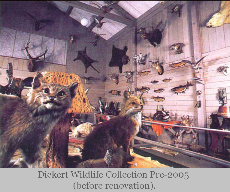 Charles Dickert Collection - pre-2005.